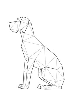 Low poly illustrations of dogs. Great Dane sitting.