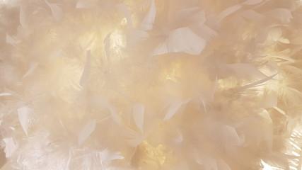 Obraz Full Frame Shot Of Feathers - fototapety do salonu