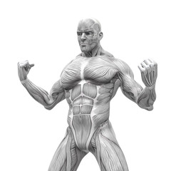muscleman anatomy heroic body is angry in white background