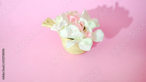 Wall mural Flowers on pink background