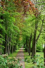 park bei schloss nordkirchen in coesfeld, münsterland , deutschland