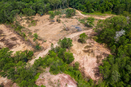Aerial view of logging and deforestation of a tropical rainforest in rural Thailand
