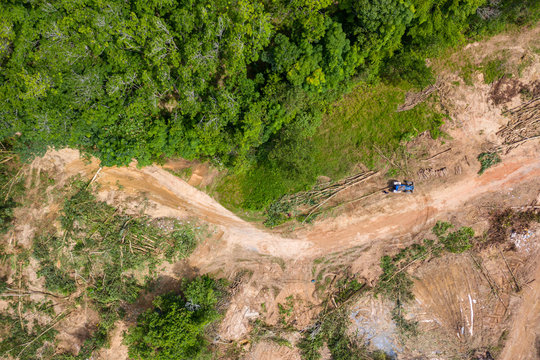 Top down aerial view of deforestation and logging in a tropical rainforest.  Deforestation contributes in a large way to habitat loss and man-made climate change.
