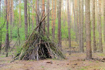 Fototapeta Primitive shelter from all natural materials. Forest hut in summer forest.