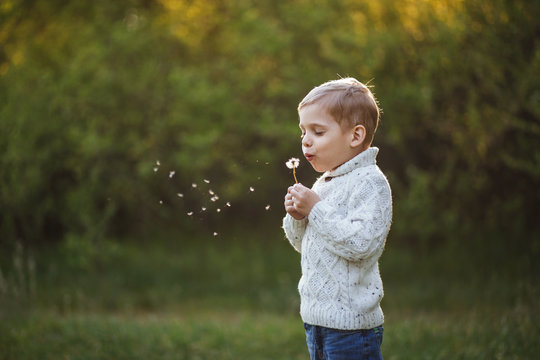 Portrait of a little boy 5 years old. Photo taken outdoors in the forest. Kid blowing on a dandelion