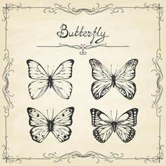 Papiers peints Papillons dans Grunge Set of hand drawn butterflies on old paper. Entomological collection of highly detailed hand drawn butterflies. Retro vintage style. Vector illustration.