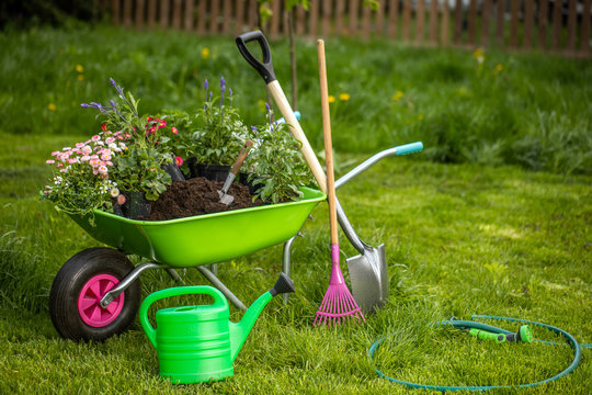 Wheelbarrow with gardening tools in the garden. Rakes, shovel, pitchfork, watering can. Beautiful background for the gardening concept