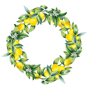 Watercolor illustration lemon wreath with leaves and flowers on an isolated white background. Hand-painted lemon ornament.