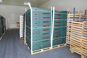 Pallets with Boxes Produce Storage