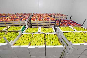 Peppers and Apples in Boxes Storage Room