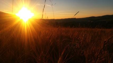 Foto auf Gartenposter Schokobraun Scenic View Of Sunset Over Landscape