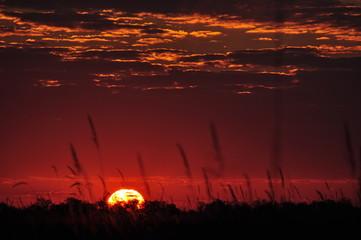 Fototapeten Kastanienbraun Dramatic Sky Over Landscape