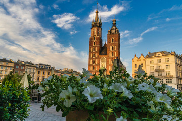 Main square, Krakow, Poland  The picture is taken in May 2020 at the time of Covid-19 Pandemic. Just when the city started to restore it's energy.