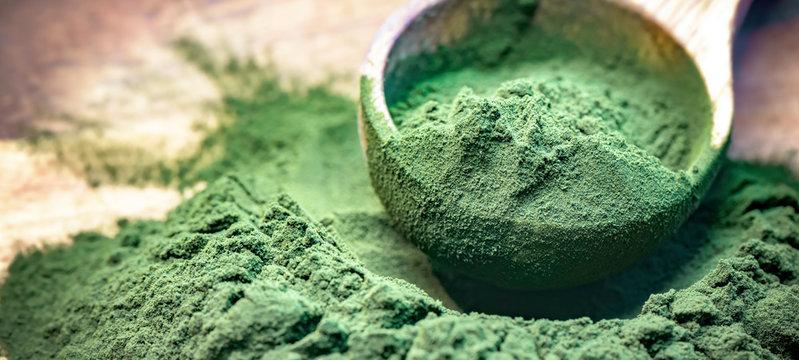 Green algae in powder - chlorella, spirulina in wooden spoon on wooden background - closeup - banner design.