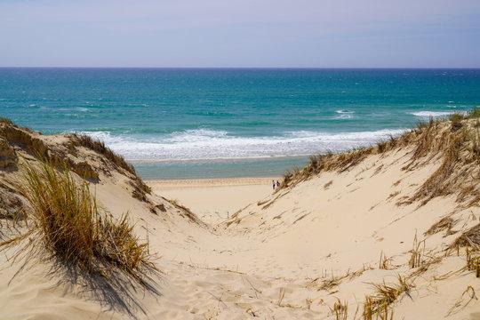 sand dunes access beach in Le porge village near Lacanau France