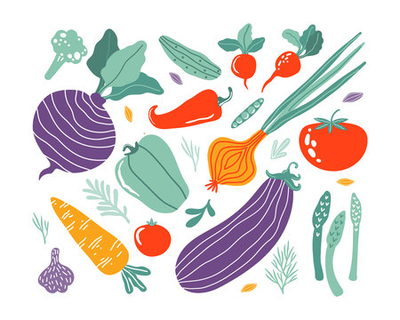 Set with hand drawn colorful doodle vegetables in trendy organic style. Vegetables flat icons cucumber, carrot, onion, tomato, beetroot, broccoli, pepper. Vegetarian healthy food. Farm products.