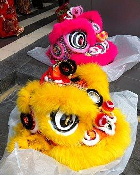 Lion Costumes On Floor