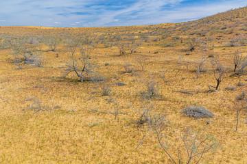 View of Karakum Desert in Turkmenistan