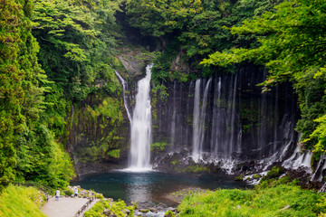 Shiraito Falls, Fuji-Hakone-Izu National Park, UNESCO World Heritage Site, Shizuoka Prefecture, Honshu, Japan, Asia