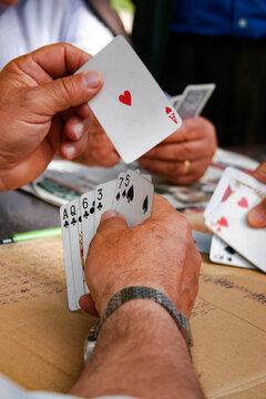 Portugal, Lissabon, Die Kartenpsieler von Alameda, Stadtteil Alameda. Am Jardim da Alameda Dom Afonso Heriques treffen sich jeden Tag gegen 15:00 Uhr die Männer zum Kartenspielen, Folgende Kartenspiele werden gespielt: Sueca:Trumpf ist Pick, Chepa: Trumpf ist Herz und Bisch de Nove: Wird um Geld gespielt