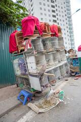 Vietnam, Hà Nội, Ba Đình, Stadtteil Cong Vi Ba Dinh / Q. Ba Dính, Vögel im Käfig bei einem Vogelverkäufer