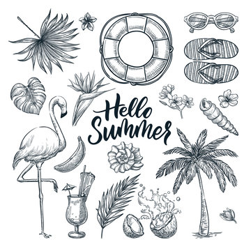 Hello summer hand drawn calligraphy lettering and tropical design elements set. Vector sketch illustration