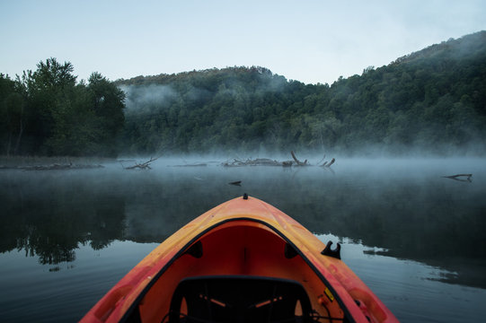 Paddling into log infested waters on a cool foggy morning.