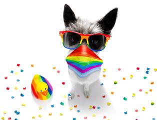 Tuinposter Crazy dog coronavirus covid 19 , gay pride dog