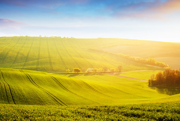 壁紙(ウォールミューラル) - Tranquil rural landscape in sunbeams. Location place of South Moravia, Czech Republic, Europe.