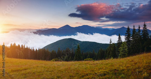 Wall mural Morning panorama of misty mountains. Location place of Carpathians mountains, Ukraine.
