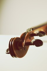 Cropped Image Of Musical Instrument Against White Background