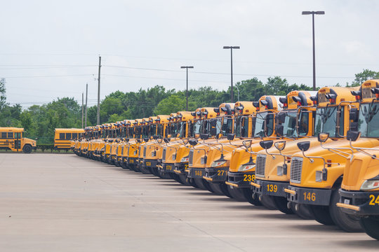 Idle school buses await the reopening of K-12 schools