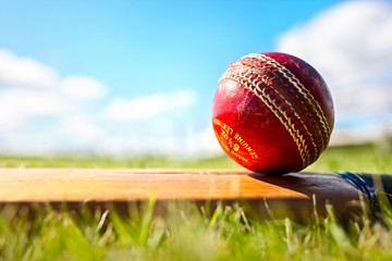 Cricket bat and red leather ball background