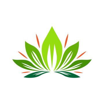 Leaf and flower logo vector design inspiration