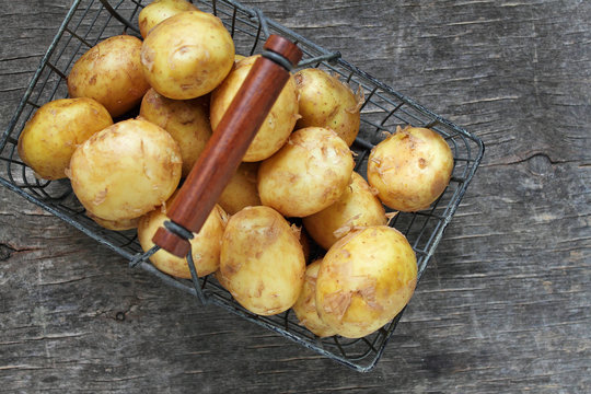 Young potatoes in a iron basket on a rustic background