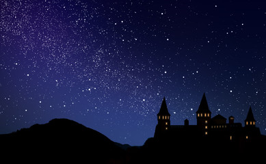 Fairy tale world. Magnificent castle under starry sky at night Wall mural