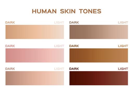 skin tone color infographic / gradient
