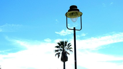 Street Light And Palm Tree Fotomurales