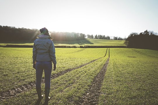 Full Length Rear View Of Woman Standing In Farm On Sunny Day
