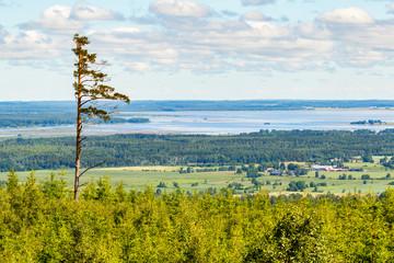 View of the lake hornborgasjon in Sweden