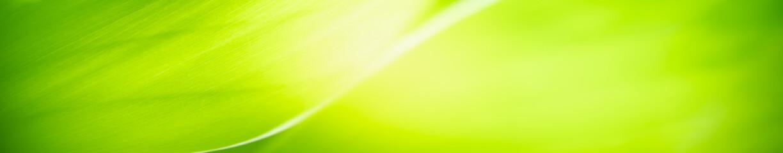 Zelfklevend Fotobehang