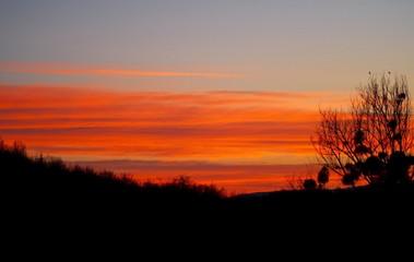 Foto auf Gartenposter Ziegel Silhouette Of Landscape At Sunset