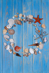 Top view of seashells and starfishes on blue wooden planks background.
