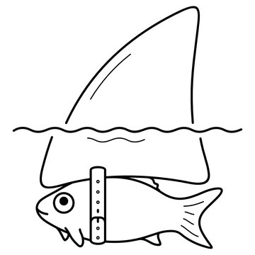 Funny fish with shark fin