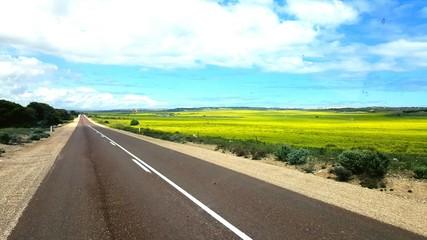 Foto auf AluDibond Cappuccino Empty Road Along Countryside Landscape