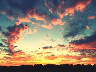 Foto auf AluDibond Gelb Schwefelsäure Scenic View Of Landscape Against Cloudy Sky