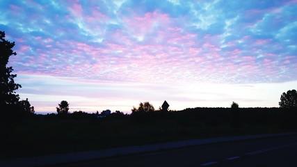 Foto auf Gartenposter Flieder Silhouette Of Trees On Landscape Against Cloudy Sky