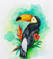 watercolor toucan ilustration with tropical flowers