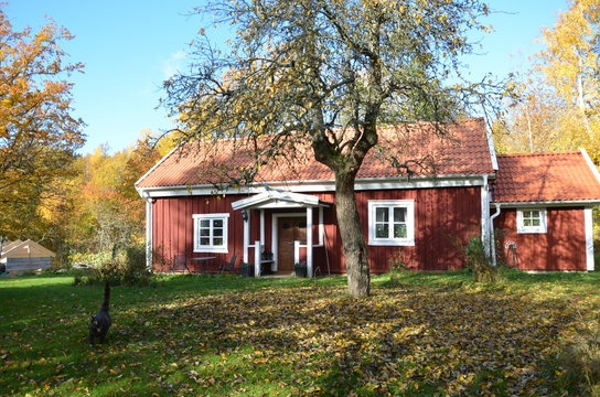 Autumn and a old Cottage