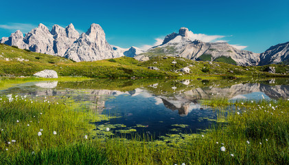 Fotomurales - Wonderful sunny landscape of Dolomite mountains in summer. National Nature Park Tre Cime In the Dolomites Alps. Beautiful nature of Italy.